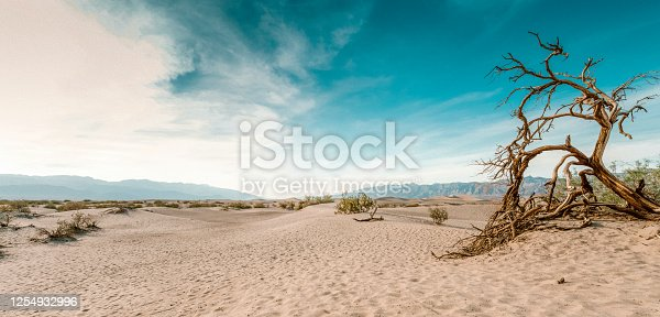 Death Valley is a desert valley located in Eastern California. It is the lowest, driest, and hottest area in North America.
