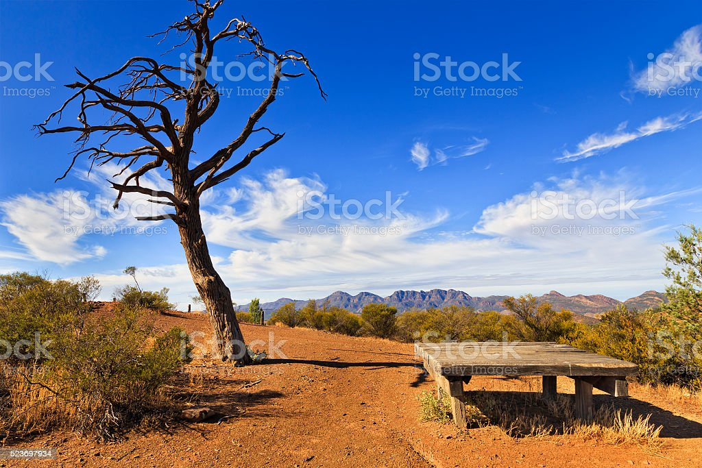 FR WP dead tree table stock photo