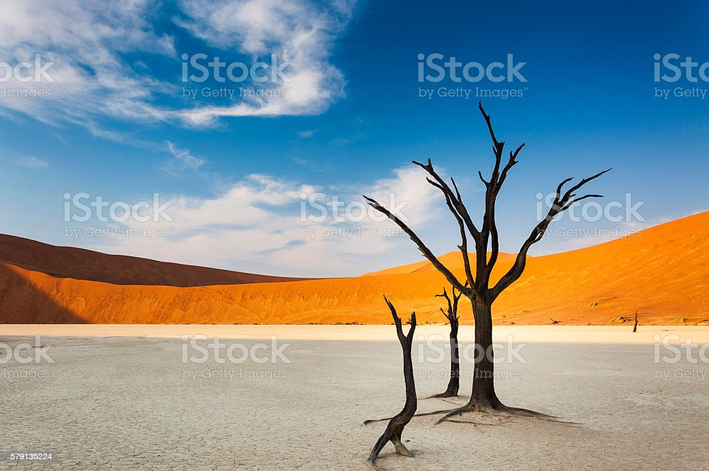 Dead trees and red dunes in the Dead Vlei, Sossusvlei stock photo