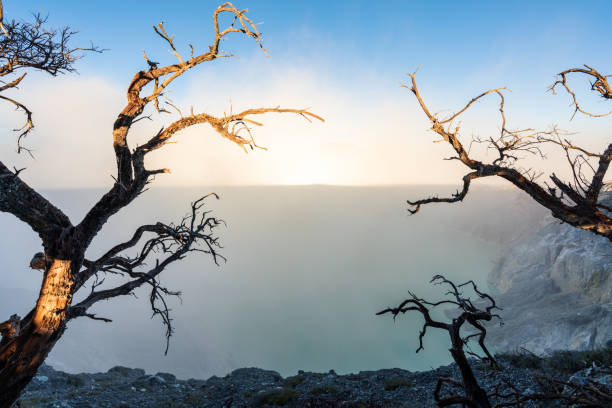 tote bäume und rauch mit see auf kawah ijen vulkanischen, berühmte reise ziel und touristische attraktion in indonesien - die toteninsel stock-fotos und bilder