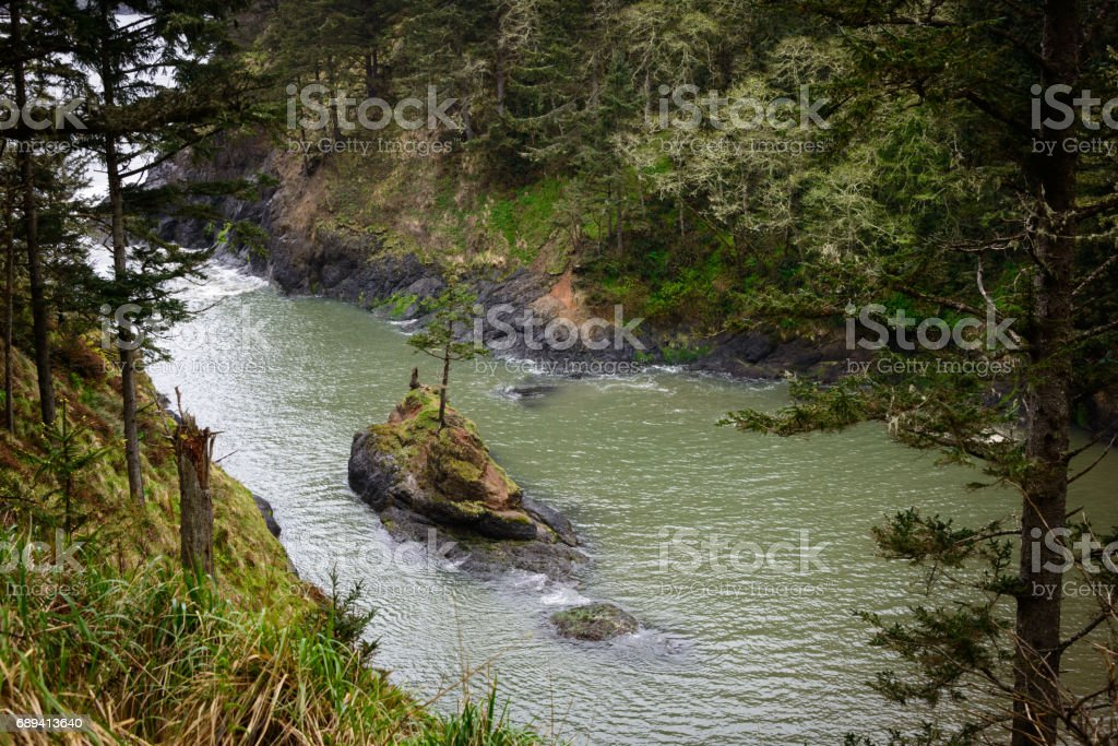 Deadman's Cove with Single Island Tree at Cape Disappointment State Park stock photo