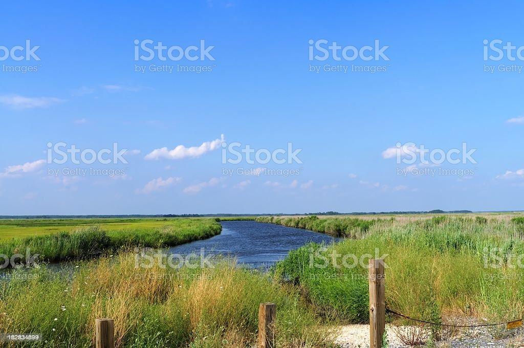 Deal Island Salt Marsh Landscape stock photo