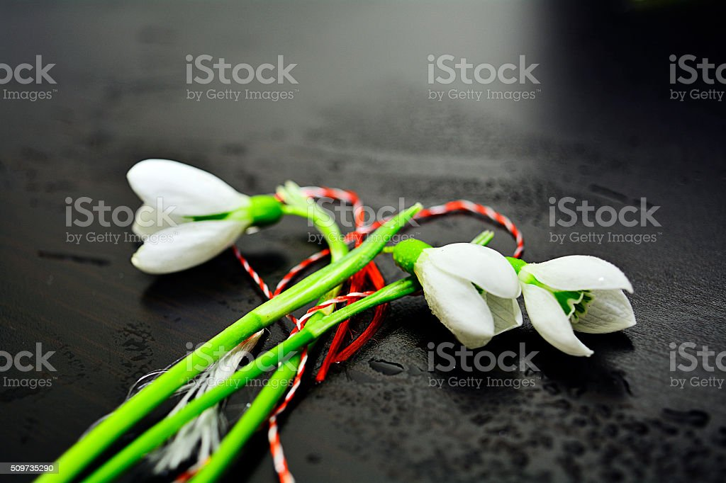 Dear Springtime stock photo