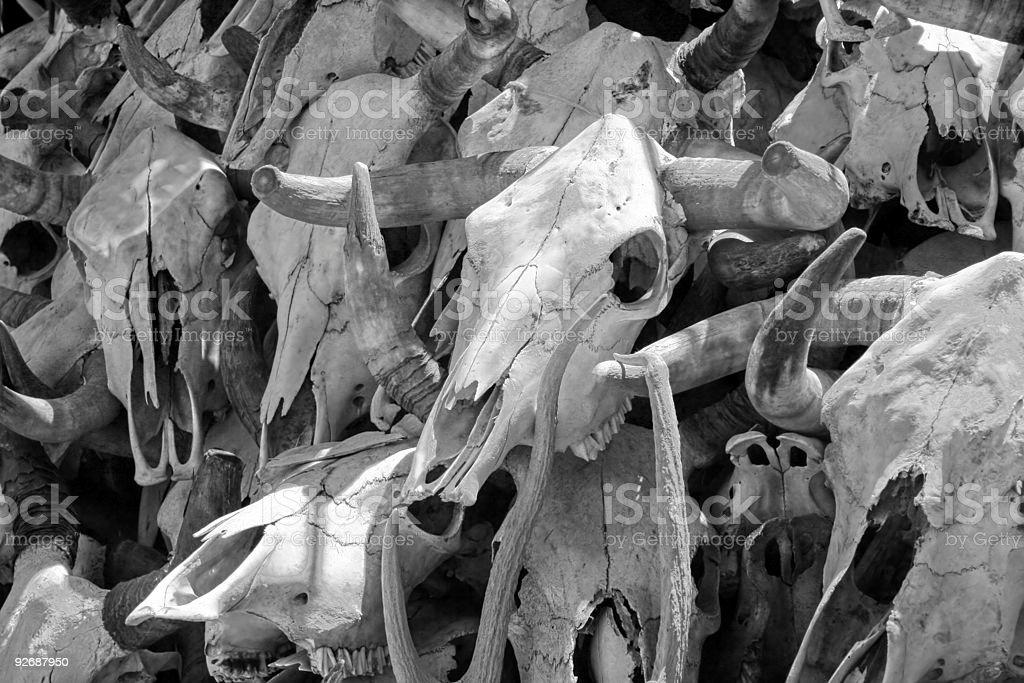 Death (B&W) royalty-free stock photo