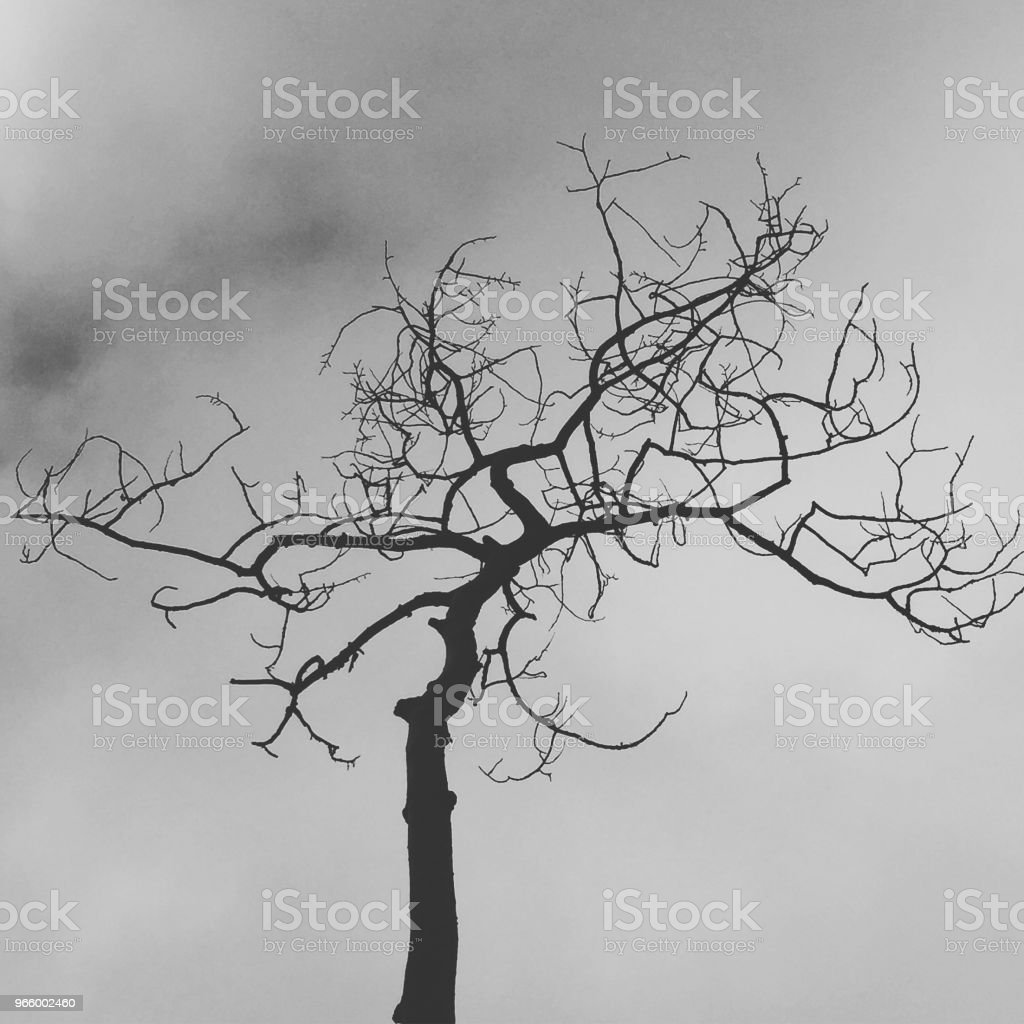 Death - Royalty-free Art Stock Photo