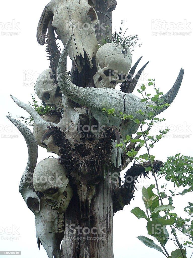 Death pole royalty-free stock photo