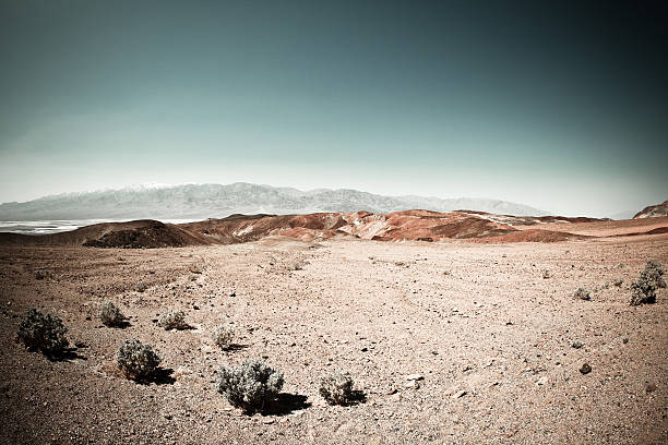 death valley arid landscape in california - wilderness stock pictures, royalty-free photos & images