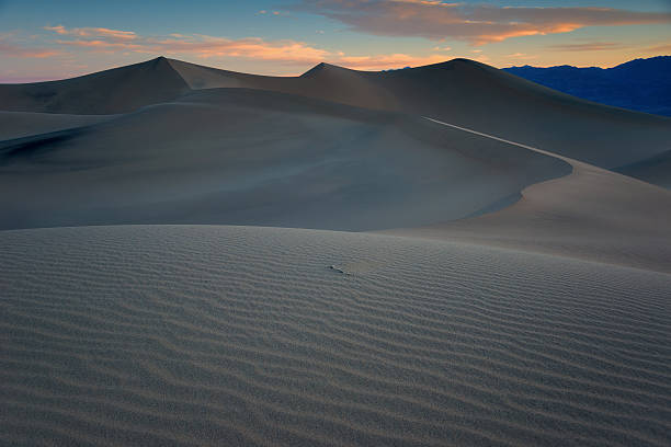 Death Valley Dunes, Morning. stock photo