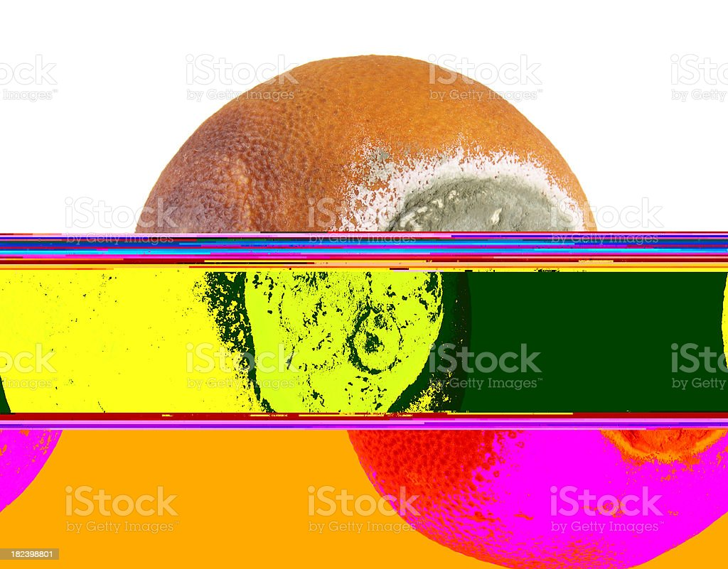 decaying orange royalty-free stock photo
