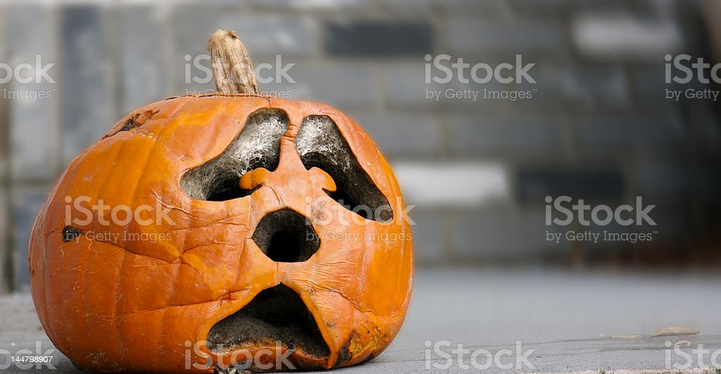 Decaying Pumpkin stock photo