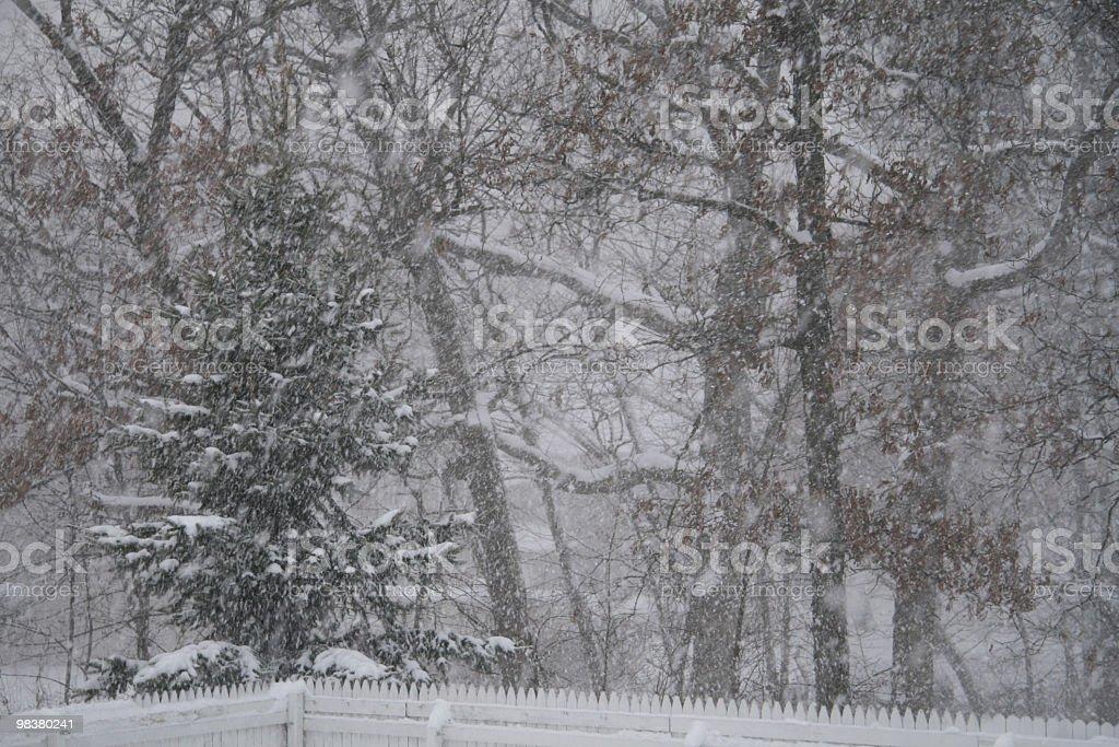12월 폭풍설 인디애나에 있는, USA royalty-free 스톡 사진