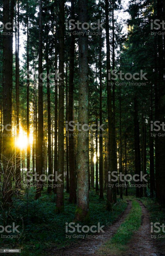 December hike in Bavaria, Germany stock photo