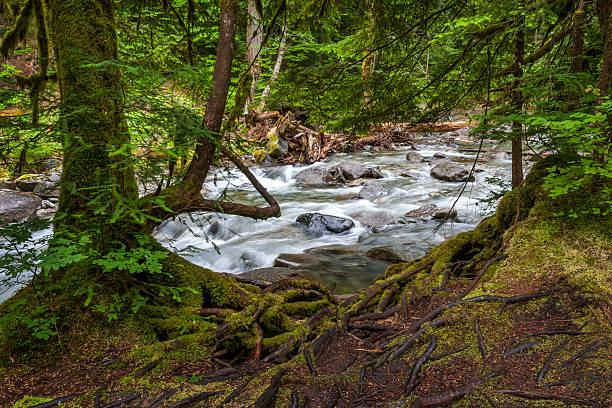 Deception Creek, Skykomish, Washington stock photo
