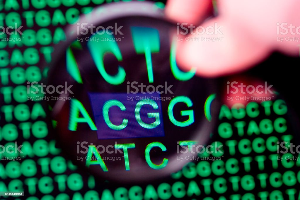 Deciphering DNA code royalty-free stock photo
