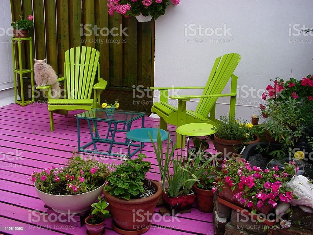 Deck with Chairs, Flowers and Cat royalty-free stock photo