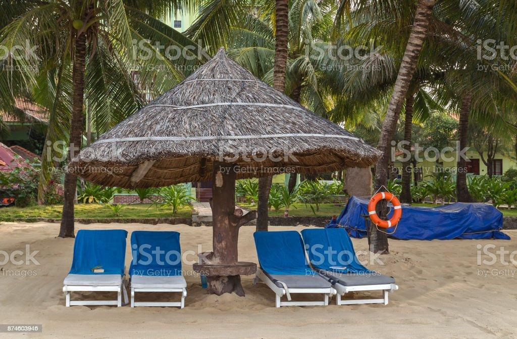 Deckchairs tropical sand beach Palm trees at tropical coast. stock photo