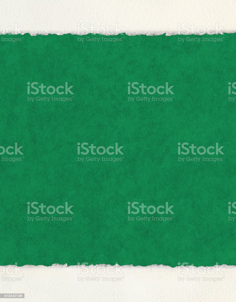 Deckled Edges on Green stock photo