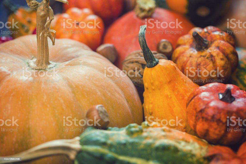 Dekorierten Herbst Hintergrund – Foto