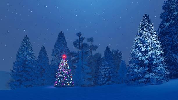 decorated christmas tree among snowy fir forest at night - mountain top stok fotoğraflar ve resimler