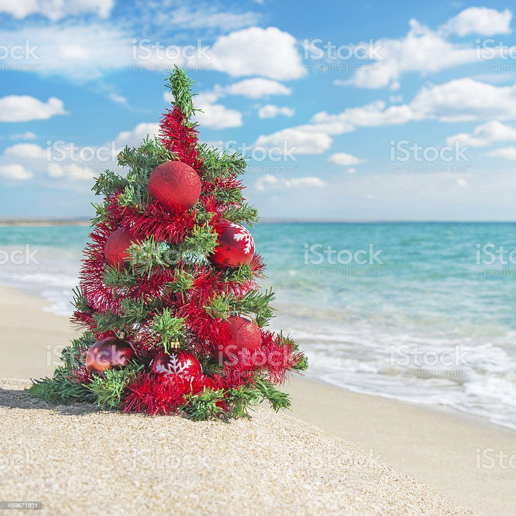Decorated Christmas Tree The Sea Beach Stock Download Image Now