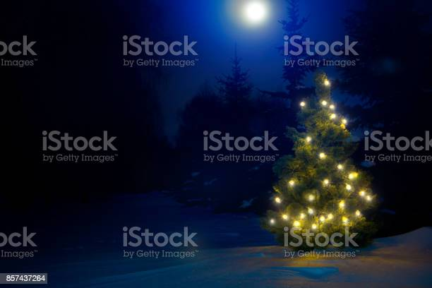 Photo of Decorated christmas tree outdoor with christmas lights with moon