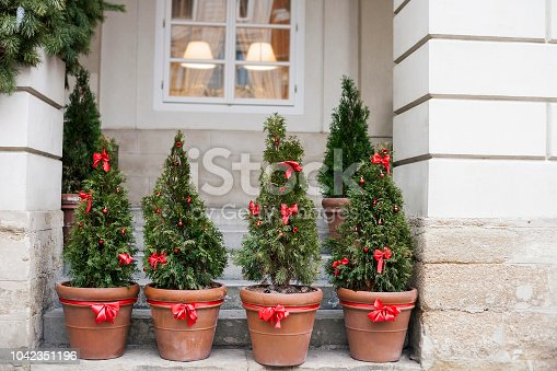 istock Decorated Christmas trees in pots near old house 1042351196