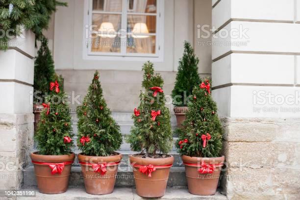 Decorated christmas trees in pots near old house picture id1042351196?b=1&k=6&m=1042351196&s=612x612&h=zupvhwimgzm ytbrrhvxomougskyrvx ig4eyo tdke=