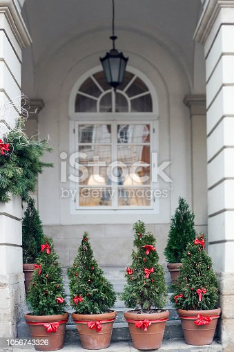 istock Decorated Christmas trees in pots near old house 1056743326