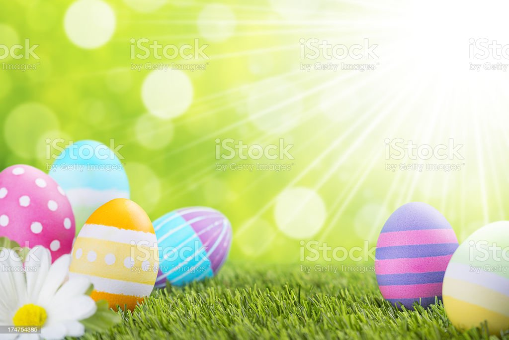 Decorated Easter eggs in the grass with a green background royalty-free stock photo