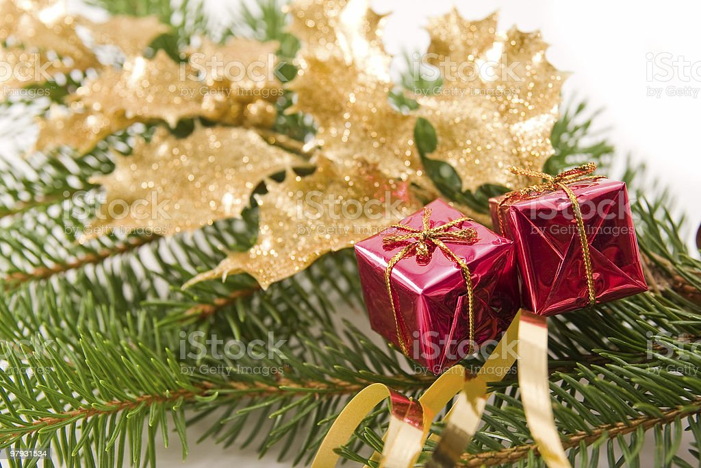 decorated golden holly branch royalty-free stock photo