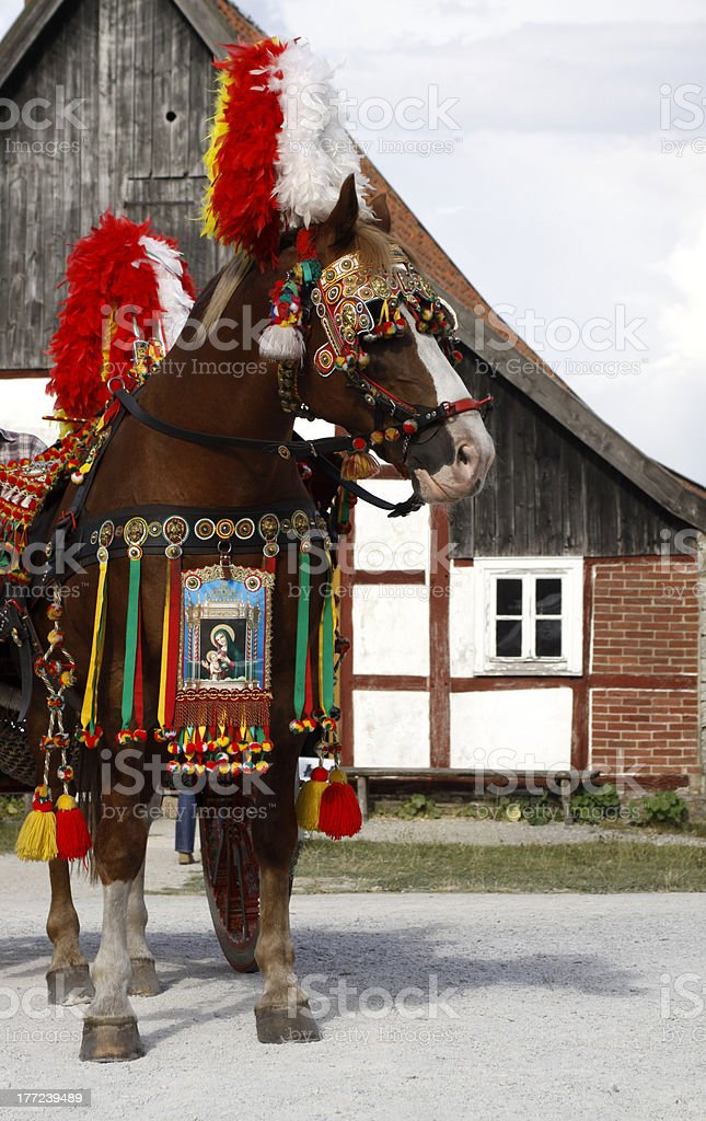 Decorated horse in front of an Italian coach stock photo