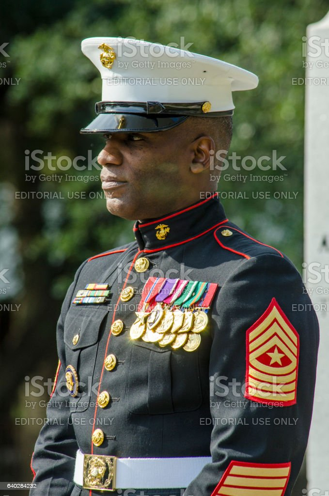 Decorated Marine Gives Keynote Speech at a Veteran's Day Cermony stock photo