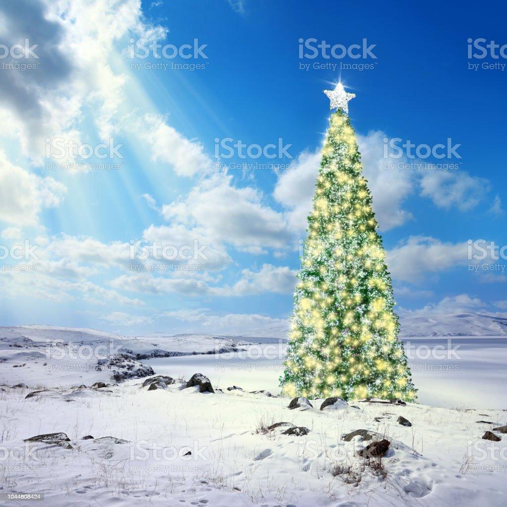 Tannenbaum Outdoor.Outdoorgeschmückten Tannenbaum Auf Schnee Bedeckt Landschaft