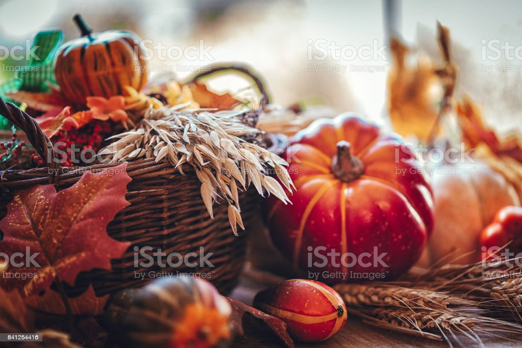 Decorated Window with Pumpkins, Leafs and Nuts stock photo