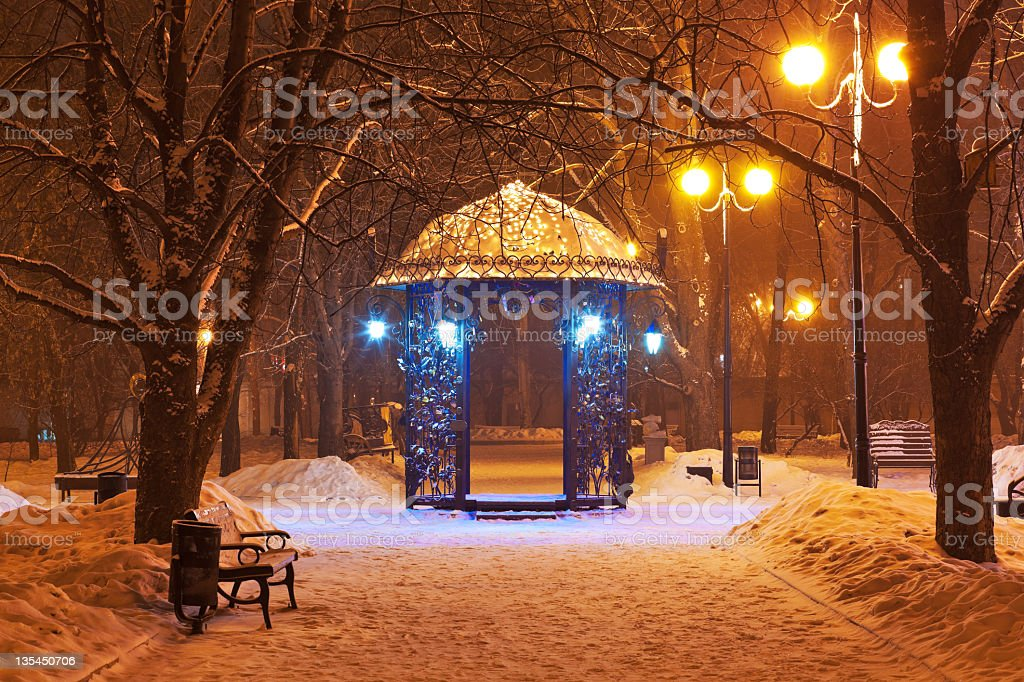 Decorated winter city park at night royalty-free stock photo