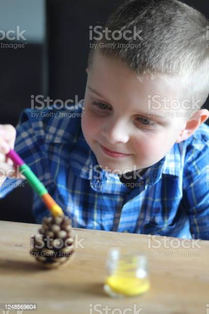 Photo of Decorating A Pinecone
