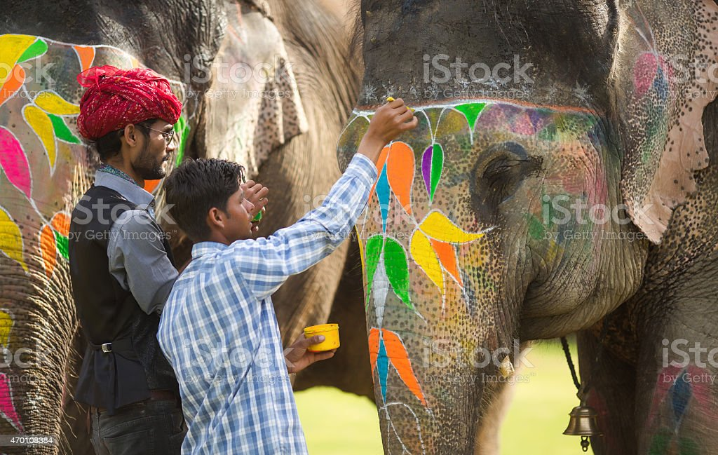 Decorating an elephant stock photo