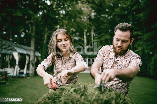 Couple Of Gardeners Trimming Bush In Backyard