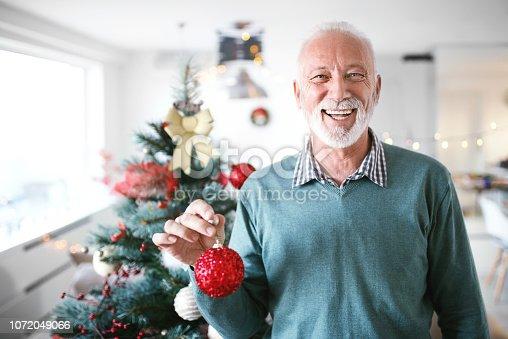 istock Decorating the Christmas tree. 1072049066