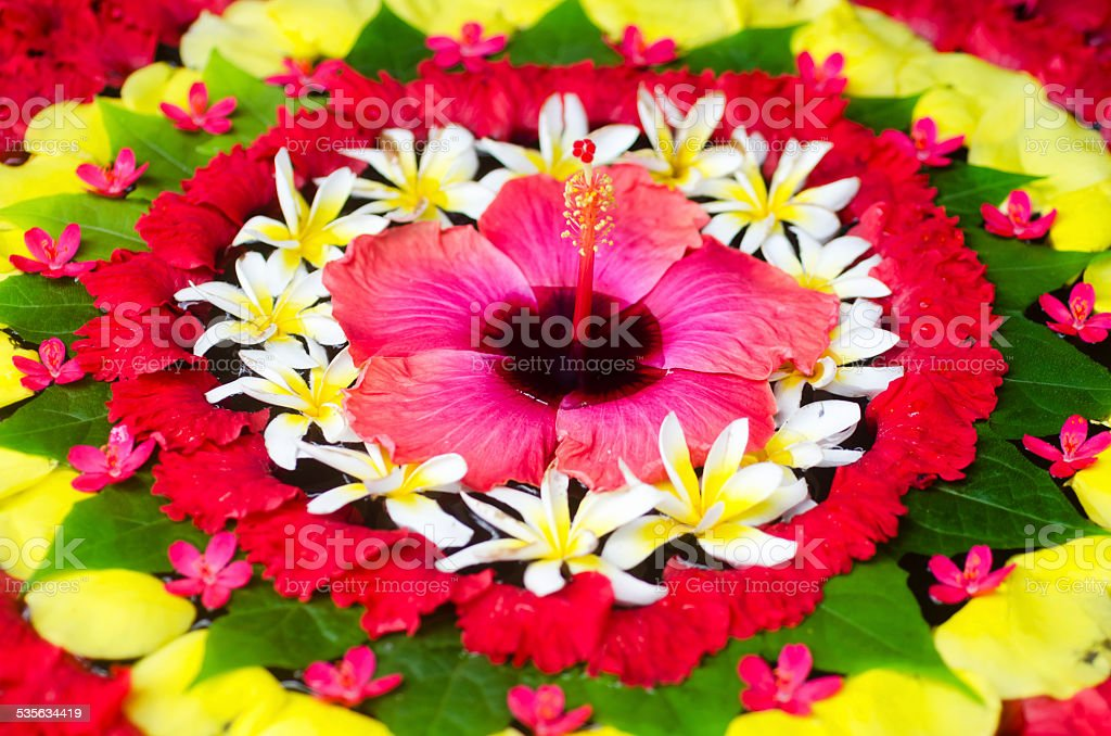 Decoration of tropical flowers - floating on the water stock photo