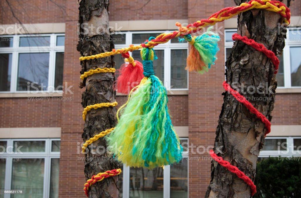一棵樹上的裝飾 免版稅 stock photo