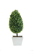 Decorative Artificial Green Plants in White Pots