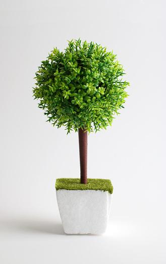Decorative Artificial Green Plants in White Pots