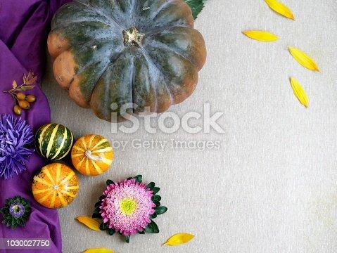 istock Decorative autumn composition of pumpkins, flowers, yellow pepper 1030027750