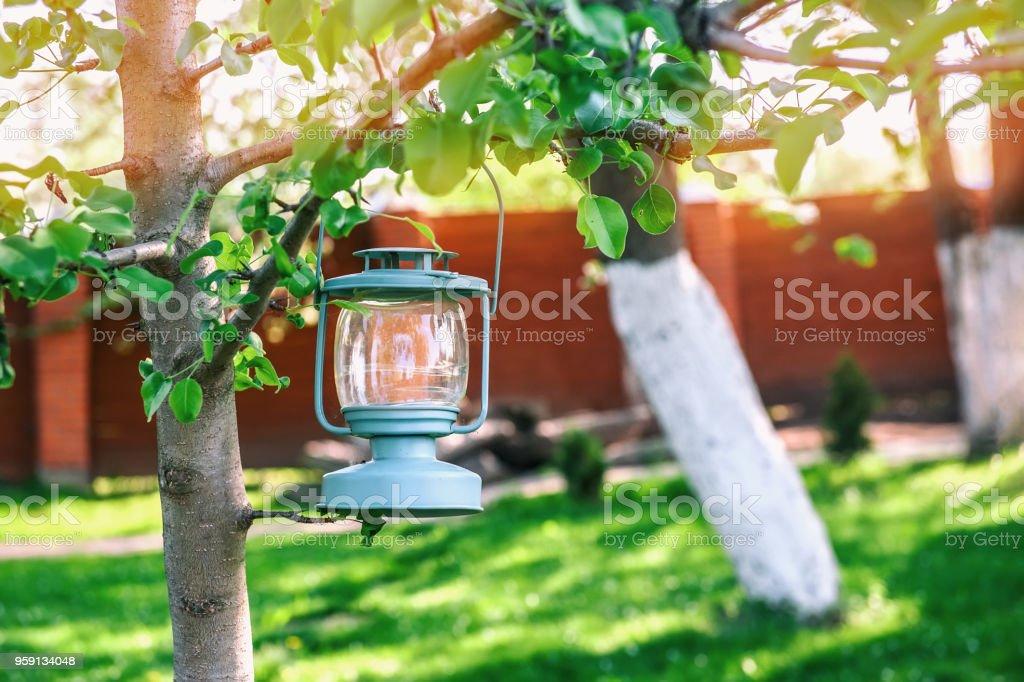 Photo libre de droit de Decoration Verre Bleu Lampe Avec Bougies ...