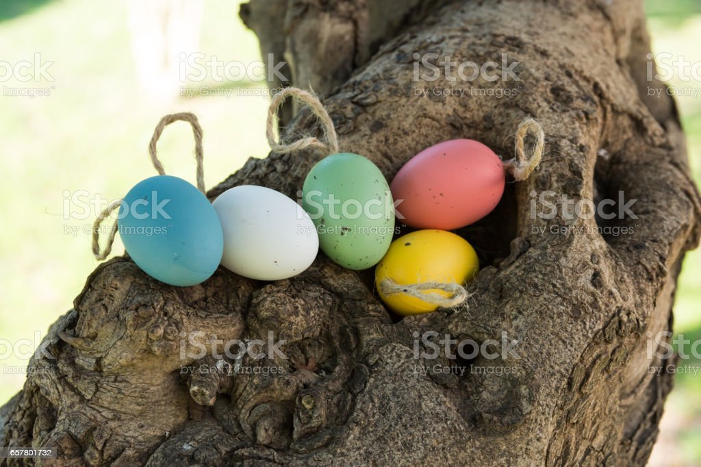 Decorative colorful Easter eggs on twine in tree hollow, holiday concept, authentic natural style, soft daylight stock photo
