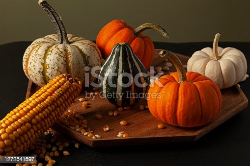 pumpkins, squashes and gourds ,  dried a corn cob with kernels and dried beans were randomly spread on a wooden plate on a  black background. Ideal image for fall harvest, halloween, thanks giving themes.
