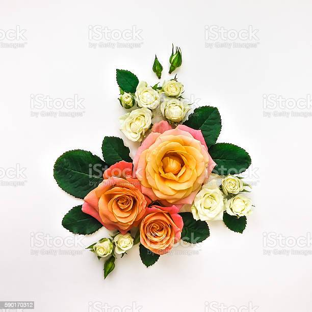 Decorative composition of roses leaves on white background flat lay picture id590170312?b=1&k=6&m=590170312&s=612x612&h=as2bt4rb925yi m2u1dmzweqleoonum1r ydprswspw=