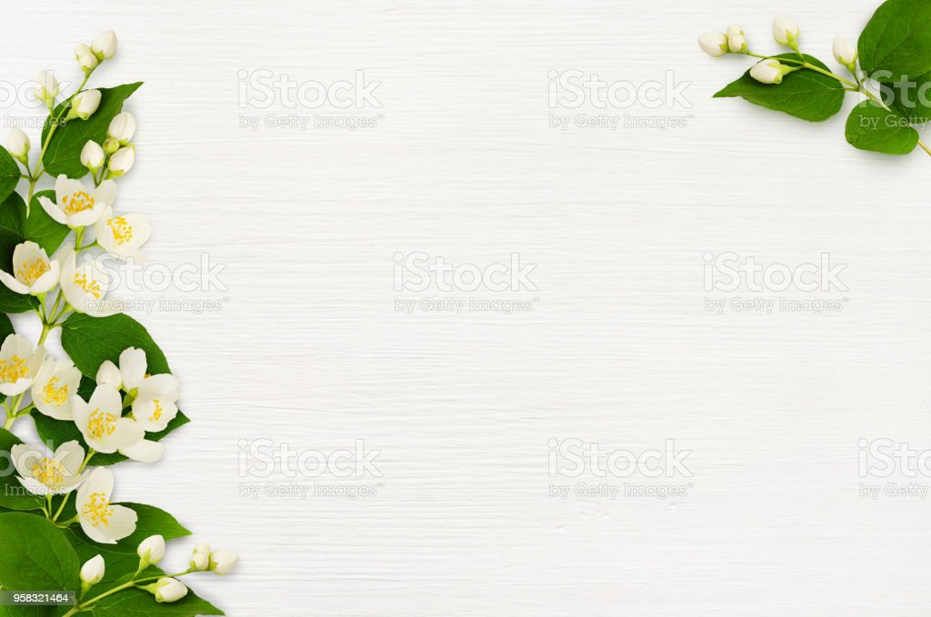 Decorative compositions with jasmine flowers on wood stock photo