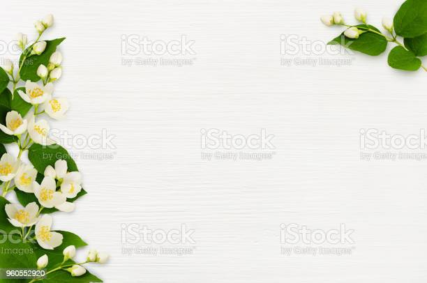 Decorative compositions with jasmine flowers on wood picture id960552920?b=1&k=6&m=960552920&s=612x612&h=4g1nolo5abh v0fnigu0h6mrstibwbjd8hacscjfl0o=